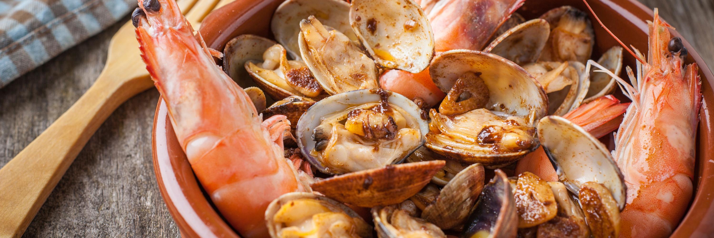Puglia Gustosa 8 Giorni